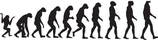 素材简介: eps格式,含jpg预览图,关键字:矢量人物,人类进化,猿类