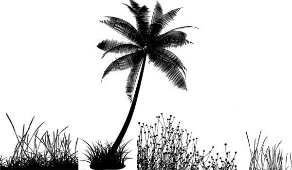 一款ai格式椰子树剪影免费素材下载