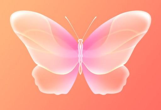 制作非常可爱的粉色水晶蝴蝶