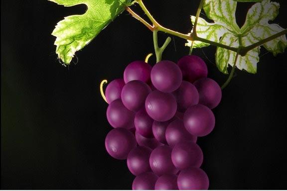 水果葡萄手工制作图片